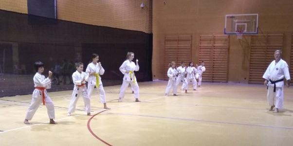 Sekcja karate wznowiła zajęcia
